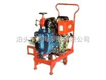 耐腐蚀的船用柴油机应急消防泵