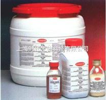 活性蛋白提取試劑盒