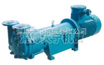 防爆2BV5161真空泵 水环式真空泵