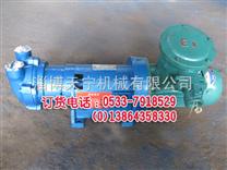 防爆2BV2071真空泵 水环真空泵 直连真空泵