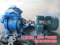 固定型砂 SK-20消失模铸造 抽真空泵