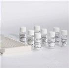 兔子胶原酶II(Collagenase II)ELISA试剂盒