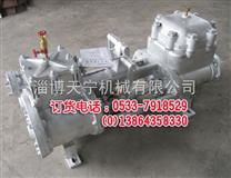 2QS-53/25蒸汽往复泵