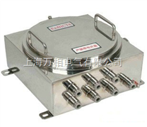 山东不锈钢防爆接线箱 不锈钢防爆接线箱生产制造商