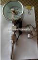 WTYY-1031X2电接点远传温度计